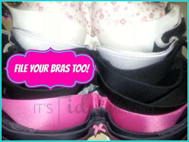 file your bras ORGANIZED