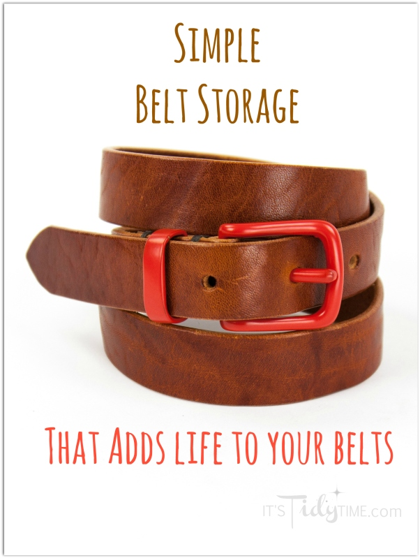 belt storage cover